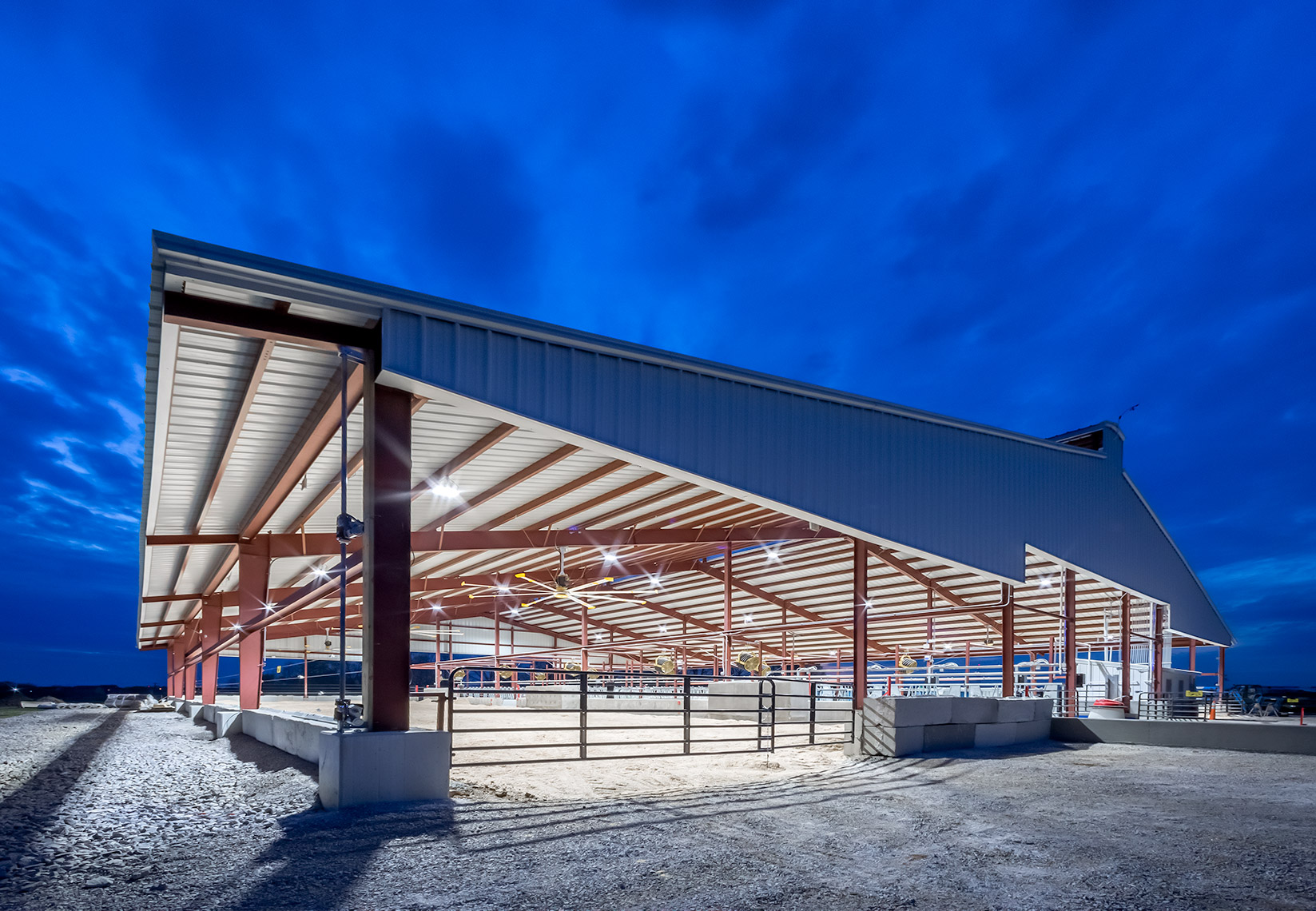 cattle shed at University of Kentucky dairy experimental station